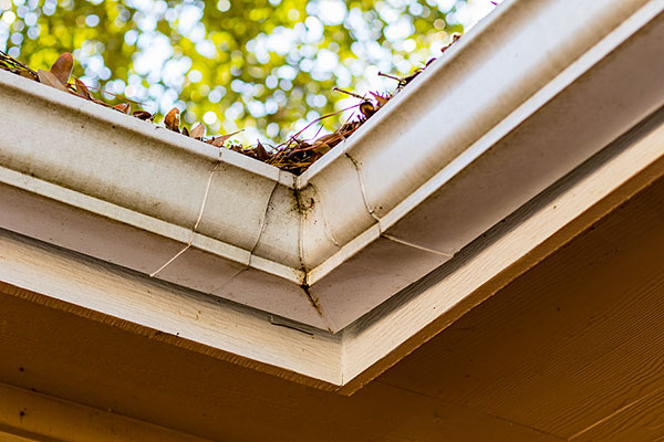 Gutters Sagging Clogged