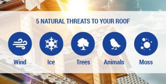 Natural Threats to Your Roof