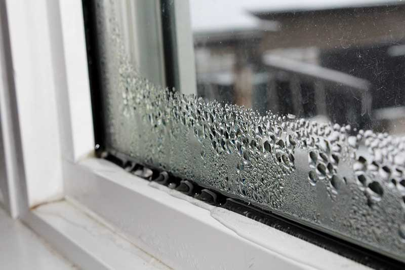 Image result for Window Damage